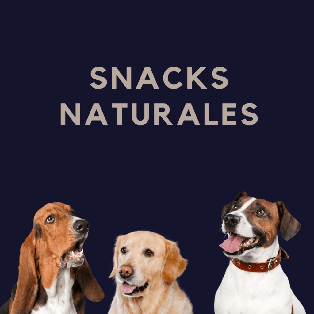 Snacks para perros
