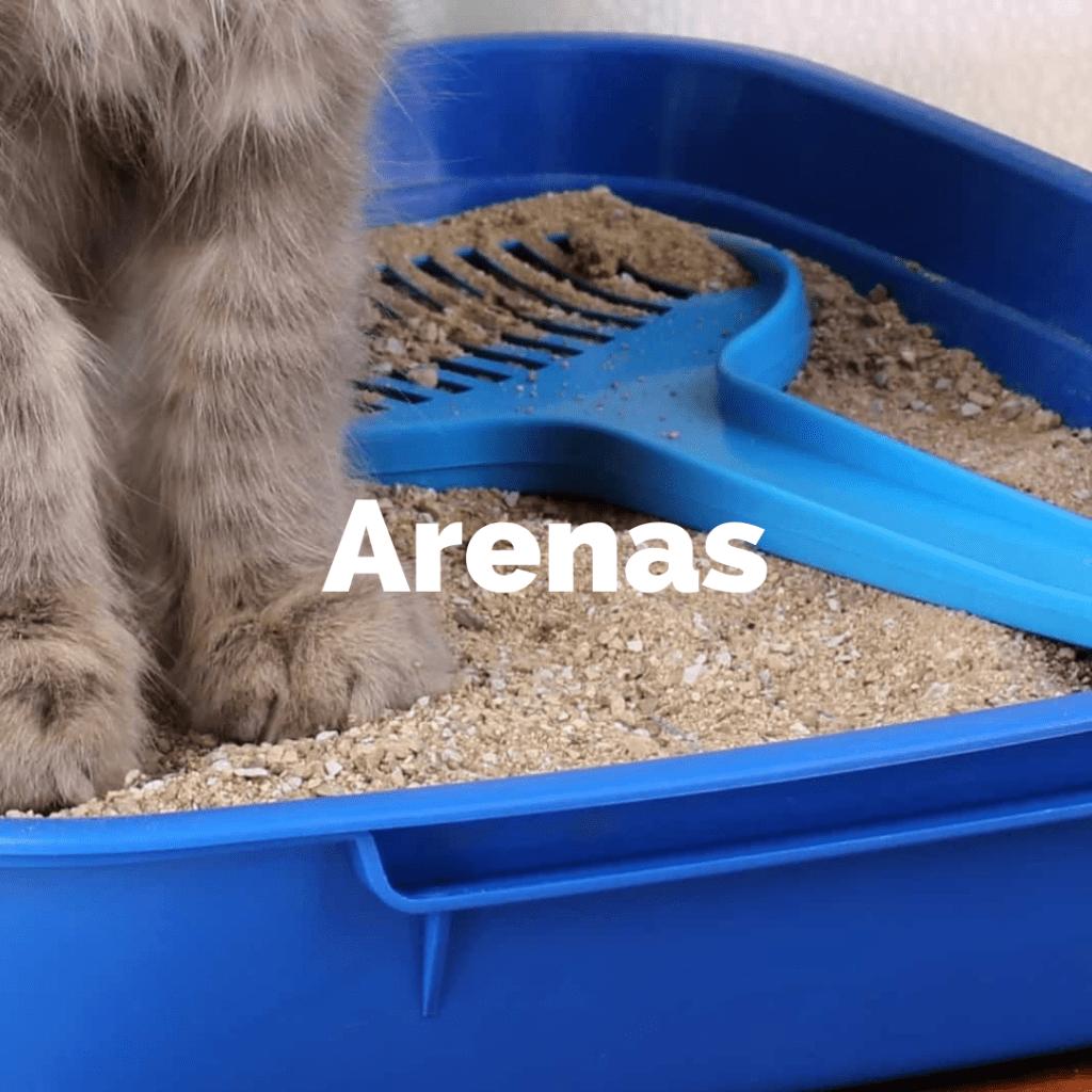 Arenas para gatos